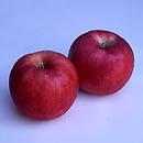 りんご [pomme](仏) [apple](英) [apfel](独)